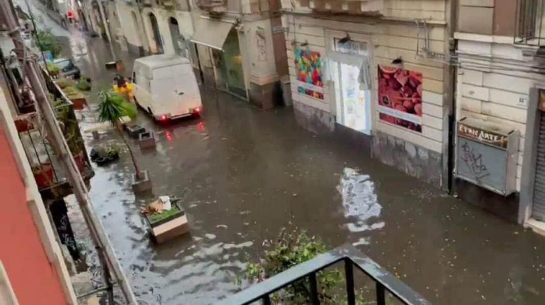 Catania nub