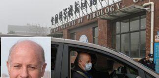 laboratorio Wuhan, esperto