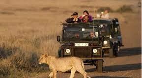 kenya turismo